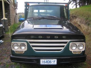 USED DODGE 1966 TRAY TRUCK 245 Hemi-6 (4.0L)